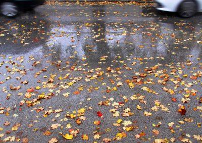Herbstsauwetter