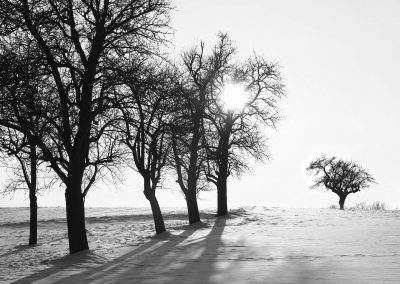 Winter in Lindgrub